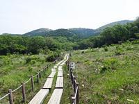 5月中旬の葦毛湿原 - 弓張放浪