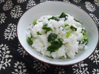 大根菜の混ぜご飯 - Minha Praia