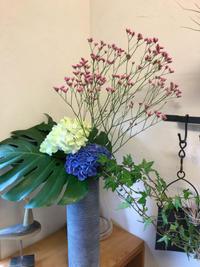 本日お届けの花は - 本日、吉日。