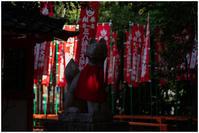 パワースポット - 休日PHOTOブログ