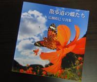 「散歩道の蝶たち」 - 呑むさん蝶日記