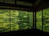 5月の京都その2(瑠璃光院と詩仙堂) - 風任せ自由人