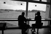 vineyard - フォトな日々