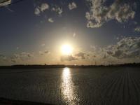 夕焼けハンター空が綺麗すぎて! - 陶芸ブログ 限 無 窯    氷裂貫入青瓷の世界