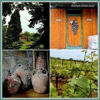 マグロの燻製と白ワイン ~ Melen にて ~ - - イスタンブル発 -  トルコタイル通信