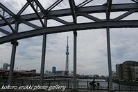 「白髭橋~石浜神社~汐入公園」お散歩 - こころ絵日記