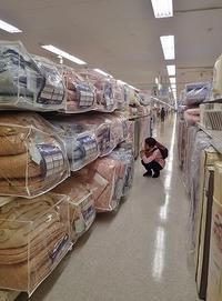 寝具選びは大変でした! - 浦佐地域づくり協議会のブログ
