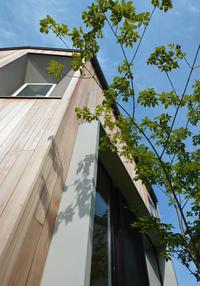 竣工2年半のレッドシダーの外壁 - kukka  kukka