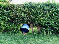 トトロがいる公園 - Kiki日記・結婚式カメラマンの子育てブログ