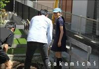 生活に根差した知識 - sakamichi