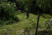 草刈りをしました。 - 加茂のトンボ (トンボ狂会)