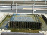 箕面市にある坪の由来 - 時の流れに身を任せ…