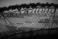 網の手柄 - フォトな日々