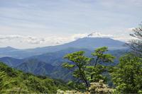 富士山を愛でに… - Awesome!
