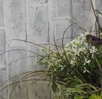 三国ヶ丘公民館レッスン5月 - グリママの花日記