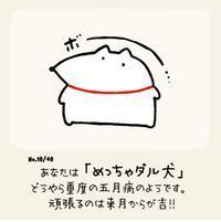ネコさんの階段 - キムケン日記★ここちぃ家