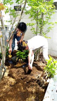 お庭づくりのお手伝い - 成長する家 子育て物語