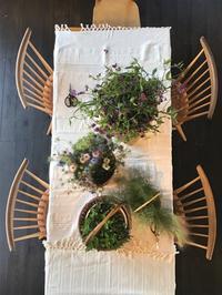 摘みたてを束ねる会のご報告 - 暮らしと植物のブログ
