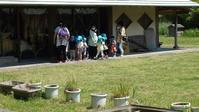 小さなお客さん - 千葉県いすみ環境と文化のさとセンター