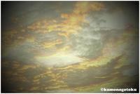 newwa - 雲のごとく