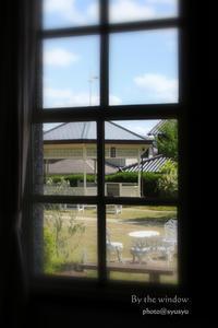 窓辺から - ♪一枚のphotograph♪
