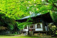 初夏の彩り(金蔵寺) - 花景色-K.W.C. PhotoBlog