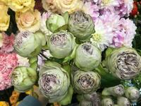 ステキな切花、ご紹介いたします(^-^) - ブレスガーデン Breath Garden 大阪・泉南のお花屋さんです。バルーンもはじめました。