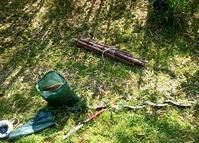 竹の頭をカット - 金沢犀川温泉 川端の湯宿「滝亭」BLOG