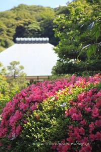 鎌倉浄妙寺 - 暮らしを紡ぐ