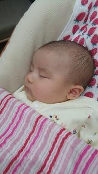 初空旅♪北海道から娘たちが来ています♪♪ - Cozyで楽しい暮らしに憧れて♪