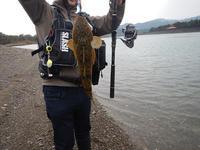 紀南の釣り - 第3の釣り