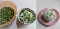 えんどう豆ご飯 - だんご虫の花