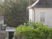 雨脚を撮る - フランス Bons vivants des marais