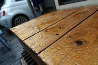 1705-068:梅雨の先走りで効果を確認 - ブーヤンとボク☆達との日々