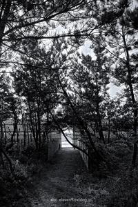さつき松原海水浴場monochrome - A  B  C