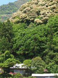 九州山地をかけぬけて - いつかみたソラ
