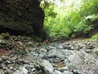 苔むした沢で鉱石探索&4年振りに出会えたキノコちゃん♪5/19【大峯】 - 静かなお山の森歩き~♪