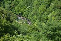 箱根「武蔵野吟遊」の過ごし方 - 幸せごっこ