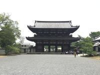 京都 フォトスケッチ 仁和寺  庭園 建物 - my gallery-2
