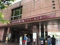 日比谷花壇大船フラワーセンター① - つれづれ日記