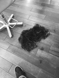 グランジにボブ - 吉祥寺hair SPIRITUSのブログ
