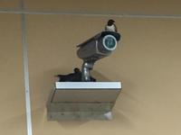 監視するツバメ - えすてる通信