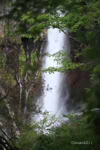 奥日光 気付けば野鳥の撮影会 ~華厳の滝、中禅寺湖、竜頭の滝~ - 日々の贈り物(私の宇都宮生活)