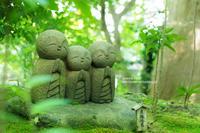 新緑の鎌倉 - jumhina biyori*