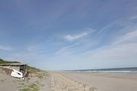 浜辺の桃色 - ecocoro日和