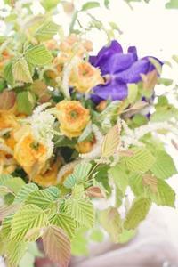 6月はパリスタイル金澤がお得です - お花に囲まれて