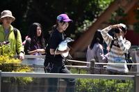 ペンギンです…東武動物公園③ - Taro's Photo