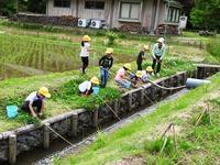 根気強さが大事です/ 自然観察 - 千葉県いすみ環境と文化のさとセンター