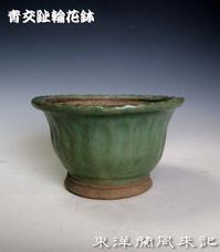 交趾鉢No.1878 - 東洋蘭風来記奥部屋
