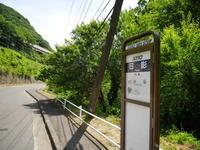 新緑の高尾山 - tokoya3@